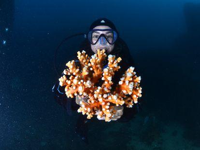 Marina Palacios, project coordinator of SOS Corals, holds a specimen of coral.