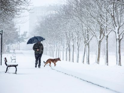 A man walking his dog in the Basque city of Vitoria on Monday.