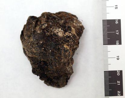 A preserved heart found at La Pedraja in Burgos.