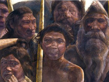 A image supplied by the Museo de la Evolución Humana of a drawing of Homo heidelbergensis, like those found at Atapuerca.