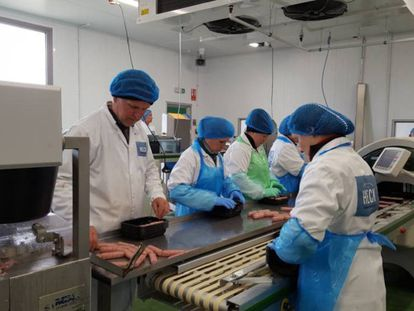 Workers at the company Heck Sausages in their factory in Kirklington, North Yorkshire.