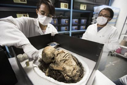 A child's mummy from the pre-Colombian era, found in the Tarahumara mountains in the northern state of Chihuahua.