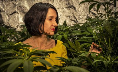 Carola Pérez, president of the Spanish Medicinal Cannabis Observatory cultivating at home.