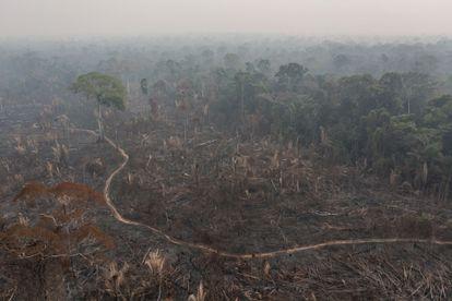 A forest fire inside the Jaci-Paraná reserve in Porto Velho.