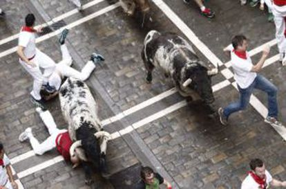 A shot from one of the 2014 'encierros' in Pamplona.