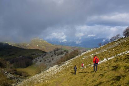 The Gorbea Natural Park (above) is the biggest park in the Basque Country, running along the border between Álava and Vizcaya. It has a network of 14 routes ranging from easy to advanced. The Altube route, for example, starts in Altube in Zuya, Álava, and covers 7.2 kilometers ending in the Txinxtularra countryside and the Burdona mountain range. The route goes through beech forest to the hills of Lekandai, from where you can see the trail winding down to the Bayas River. For more information: turismo.euskadi.eus