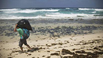Alexis Rivera carries trash on Ambar beach.