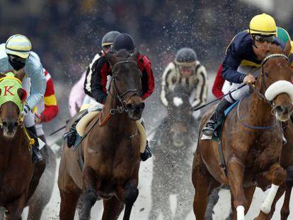 A race gets underway at Madrid's Zarzuela.