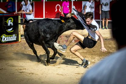 A fight with young bulls in Vidreres.