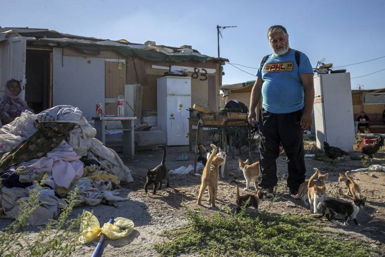 Vasile Antonescu with his cats in the Madrid shanty town of El Gallinero.