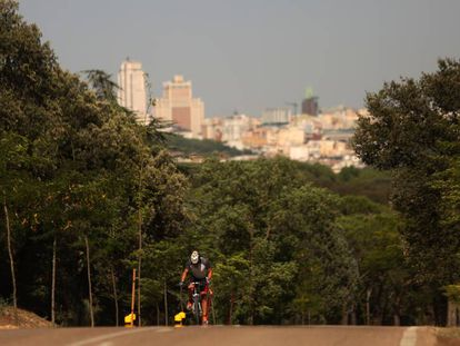 A cyclist rides through Casa de Campo, with Madrid in the background.