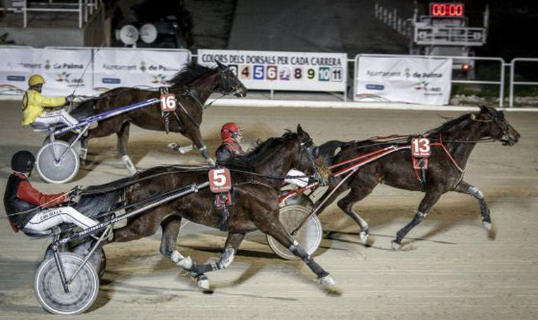 A race at Son Pardo Hippodrome in Palma de Mallorca in 2013.