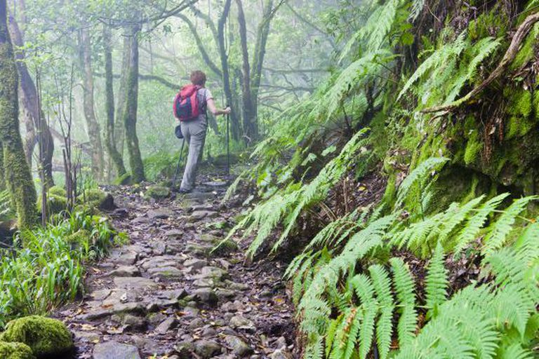 A hiker in the Anaga rural park in Tenerife.
