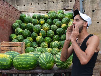 A watermelon vendor in Fez, Morocco.