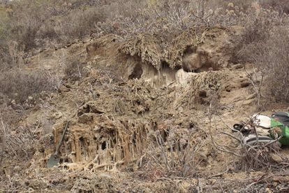 Crystallized rocks around the tangled vegetation that grows on the hillside, known as tuff.
